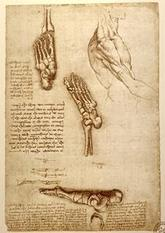 Reflexology: from ancient traditions to science